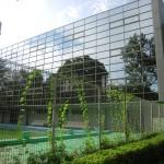 日本社会事業大学3