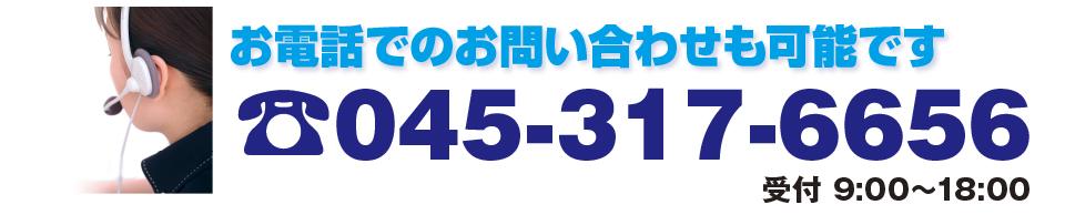 045-317-6656